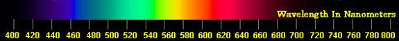 The Visible Light Spectrum with Wavelengths